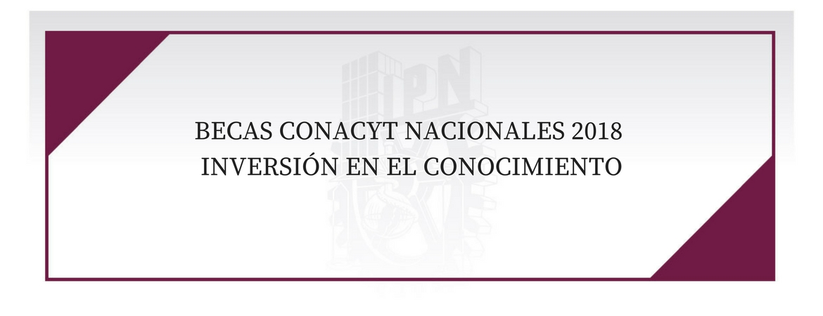 BecasConacyt